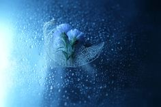 Into the dream by Lafugue Logos, via 500px