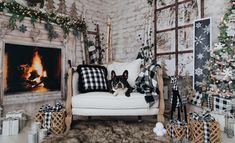 5 Babies, Black Accents, Porch Swing, Christmas Photos, Outdoor Furniture, Outdoor Decor, Families, Backdrops, News