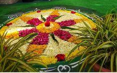 Flower Rangoli, Diwali Decorations, Fruit, Flowers, Royal Icing Flowers, Flower, Florals, Floral, Blossoms