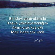 * Ali Lidar