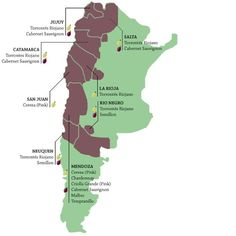Map of Argentina and Chile's regions and wine grapes.