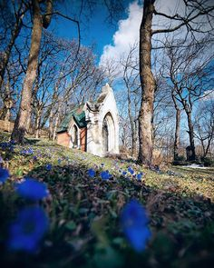 Empty Cemtery  #letskeepitthatway #STAYHOME #kahlenberg #friedhof #cemetery #graves #graveyard #chapel #wienerwald #violets #springinvienna #wien #vienna #austria #igersvienna #igersaustria #urbex #agameoftones #moodygrams #moody #latenightvienna #photowalk #visitaustria #visitvienna #wienliebe #1000thingsinvienna #sonyalpha #sonyalpha7 #inlovewithvienna Visit Austria, Vienna Austria, Alpha 7, Photo Walk, Violets, Late Nights, Cemetery, Empty, Urban
