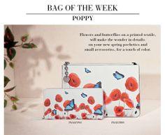 Poppy line by Tosca Blu