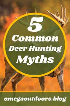 There are many misconceptions about #deer and #deerhunting throughout the country. Everyone believes that one crazy thing that an uncle or grandfather told them, and you probably never thought twice to question it. Don't worry, after some research, I sadly realized I was also one of these gullible young #hunters. Here are five quite popular deer #hunting myths and the truth behind them.