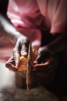 Cutting a fresh Gujje/Tender Jackfruit