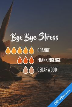 Bye Bye Stress - Essential Oil Diffuser Blend, calm, relax, wind down Essential Oil Diffuser Blends, Doterra Essential Oils, Young Living Essential Oils, Young Living Oils, Doterra Diffuser, Cedarwood Essential Oil, Essential Oil Combinations, Diffuser Recipes, Perfume