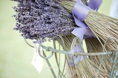 Dried Lavender Flower Bunches 8x12 Original Fine by eDarlingPhoto,