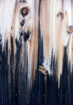 """""""Frisch gestrichen - ein Name wie Silberklang, wie der Wind, der den ziehenden Fischer fahren lässt"""""""