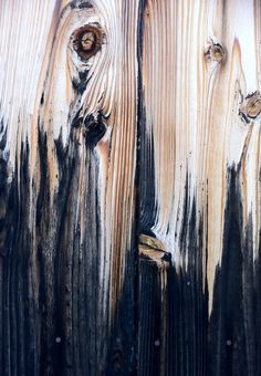 Wood, fading into dark.
