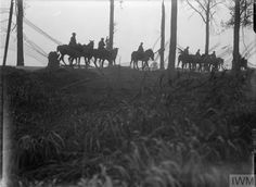 Sep 6 1917 Road to Veldhoek, near Ypres. A camouflaged screen borders the road