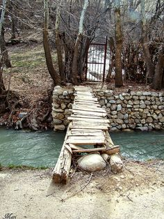 Nature Life  (Iran-Shiraz-Sepidan) by Mari Rasti, via Flickr