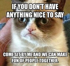 If  you don't have anything nice to say come sit by me and we can make fun of people together.