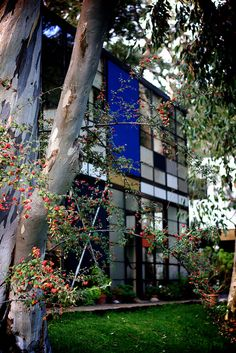 Eames House with idea of Mondrian  painting, Los Angeles. CA 1945  *Lecture: American Modern*