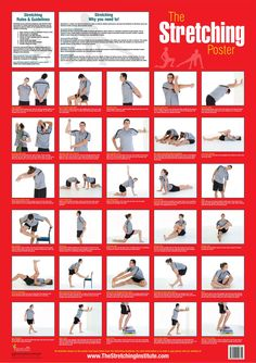 """The Stretching Poster"" various key stretches for the entire body for a full body stretch. #stretching #chart #flexibility"