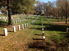 Arlington National Cemetery (a Joe Cruz photo).