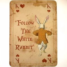 Follow the white rabbit.