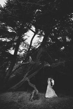 Forest Wedding, Woodland Wedding, Wedding Day, Earth View, Fantasy Wedding, Couple Portraits, Marry Me, Wedding Planner, Photo Ideas