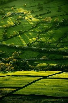 [miscmorgan: Derbyshire, England enchantedengland: OOOOOOH DERBYSHIRE the lighting here oh my..]  ...