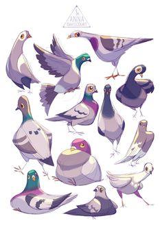 61 Ideas for bird illustration drawing ideas Bird Drawings, Animal Drawings, Cute Drawings, Bird Illustration, Character Illustration, Animal Illustrations, Digital Illustration, Animal Sketches, Art Sketches