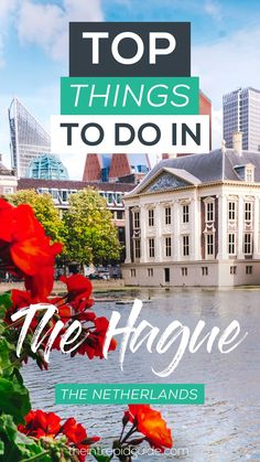 top things to do in the hague netherlands guide