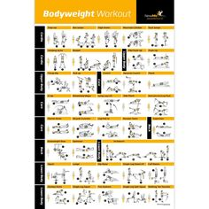 """Amazon.com : Bodyweight Exercise Poster - Total Body Workout - Personal Trainer Fitness Program - Home Gym Poster - Tones Core, Abs, Legs, Gluts & Upper Body - Improves Training Routine - 20""""x30"""" : Sports & Outdoors"""