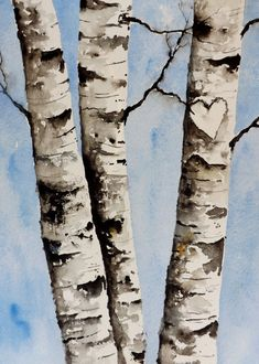 Original Watercolor Painting Birch Tree Heart by pinetreeart, $58.00