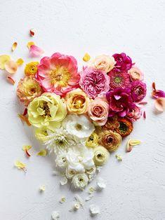Peace and love. Rose Flower Wallpaper, Flower Backgrounds, Arte Floral, Flower Farm, Envelopes, Watercolor Flowers, Flower Decorations, Flower Power, Floral Arrangements