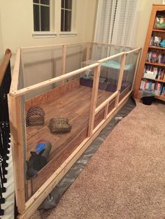 Our rabbit play area inside the house. Hubby built it so the bunnies can be happy with more space.