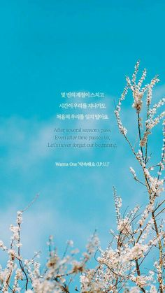 Best Quotes Lyrics Kpop Wanna One 27 Ideas K Quotes, Lyric Quotes, Best Quotes, Korean Song Lyrics, Bts Lyric, K Pop, Korean Phrases, Korean Words, Song Lyrics Wallpaper