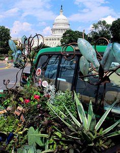 In the Garden / Truck Garden