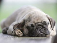 The science of sleep: This is why you're tired on Monday mornings