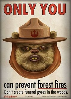 Only yub-yub can stop an Endor fire