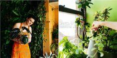 Chcete, aby vaše rastliny kvitli rýchlejšie a boli krajšie? Urobte si doma toto kúzelné hnojivo. Odporúčajú ho aj záhradkári