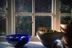 Check out the butterfly Window Sill, Serving Bowls, Cottage, Butterfly, Tableware, Kitchen, Check, Home, Dinnerware