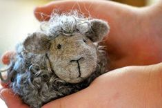 Black Sheep Felting Kit by BearCreekDesign on Etsy