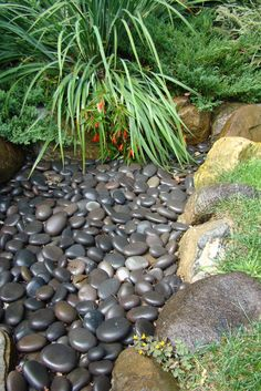"Back yard side garden. ""rock"" garden, creek bed, lots of ideas for smooth, round rocks"