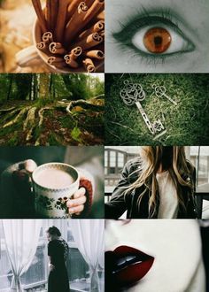 Capricorn. Zodiac aesthetics based on these posts: [ x ][ x ]