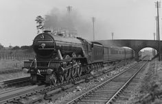 For many this is the classic appearance of Flying Scotsman from circa Although there is a belief amongst many that this is the appearance to which the locomotive was restored in the Flying Scotsman was last seen in this form in Live Steam Locomotive, Diesel Locomotive, Flying Scotsman, National Railway Museum, Rail Transport, Steam Railway, Railroad Photography, Road Train, Train Service