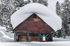 http://www.georgianjournal.ge/discover-georgia/33373-lost-in-a-skiers-dream-german-adventurers-mind-blowing-journey-in-bakhmaro-georgia.html