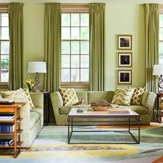 A Custom Colored Rug Complements This Family Room S Contemporary Green Palette Traditional Home Photo Gordon Beall Design David Herchik