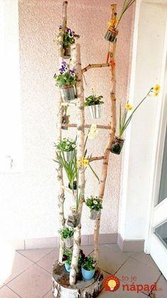 Looking for a great, original garden decoration? Search no further … – Small Balcony Decor Ideas Diy Home Crafts, Garden Crafts, Garden Projects, Small Balcony Decor, Balcony Plants, Garden Deco, Spring Projects, Deco Floral, Garden Spaces