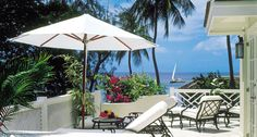 Coral Reef - Barbados