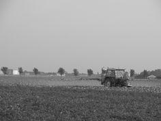 2014: Veertweg Noord Scharwoude