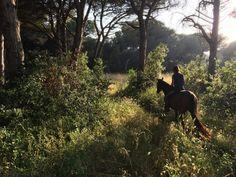 Something Beautiful, Life Is Beautiful, Adventure Aesthetic, Nature Aesthetic, Horse Girl, Horseback Riding, Horse Riding, Farm Life, Country Life
