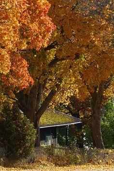 autumn near Kastelholm Castle in Sund, Åland, Finland