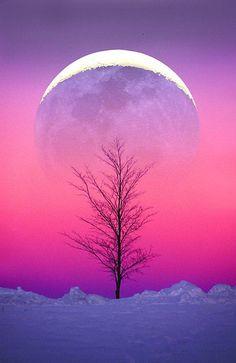 Winter moonrise in Alaska.Photo: Larry Landolfi