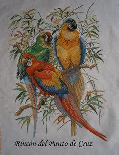 http://rosana-puntodecruz.blogspot.com.es/2013/05/monasterio-y-guacamayos.html