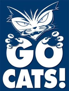 That's right, GO CATS!!