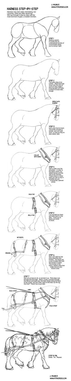 How to draw a Horse in Harness by sketcherjak on DeviantArt