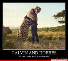 LOL!! 13 HYSTERICAL Calvin and Hobbes Memes!